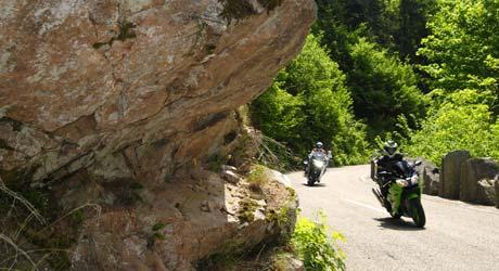 Schwarzwald Flüchtiger