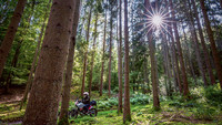 Spessart: Durch den ewigen Wald – TOURENFAHRER 11/2021