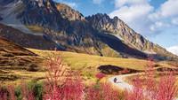 Frankreich: Westalpen - Alp-Traum – TOURENFAHRER 6/2021