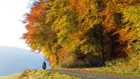 Sicher Motorrad fahren im Herbst