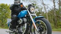 Gebrauchtkauf & Zubehör Harley-Davidson-Sportster-883-Baureihe