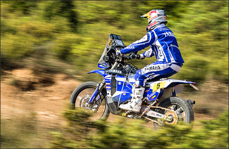 Yamaha WR 450 F Rally